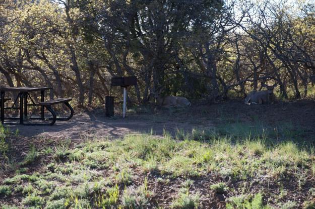Mesa Verde  006