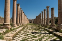 Colonnaded street. You have to imagine that the space behind these columns was filled with stores and houses.